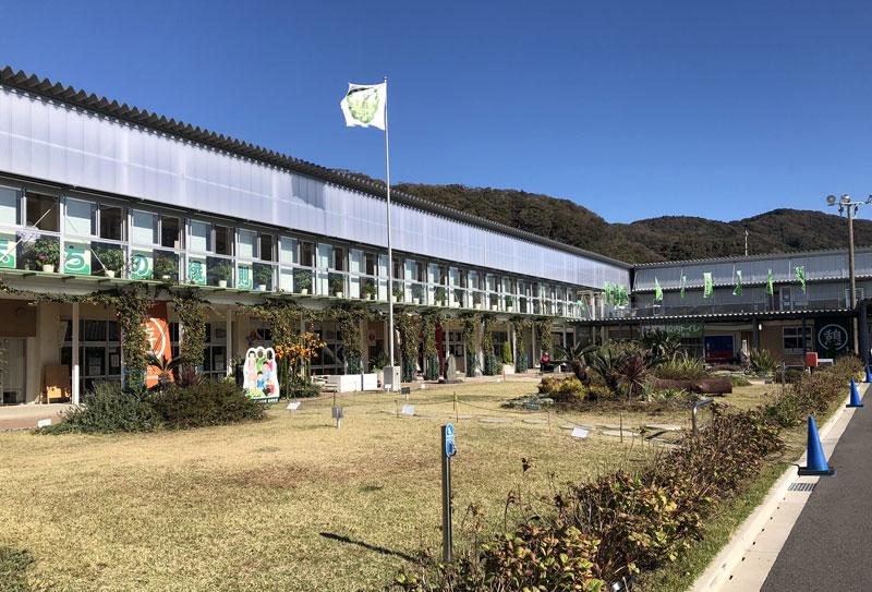 保田小学校の外観