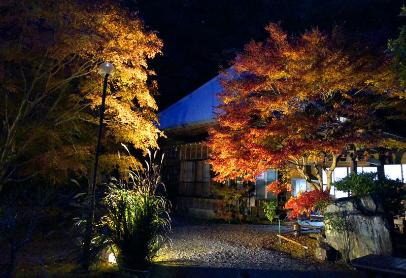 小松寺の紅葉ライトアップ 本堂