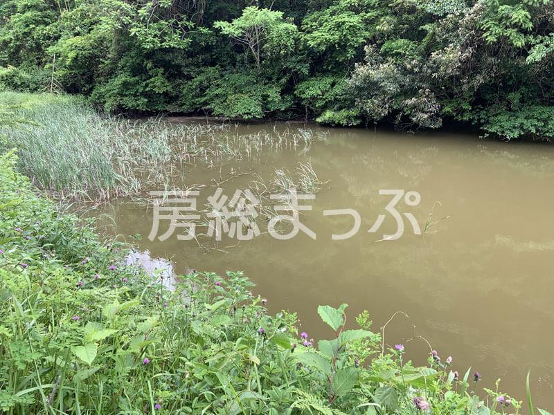 千葉県館山市の茂名ため池